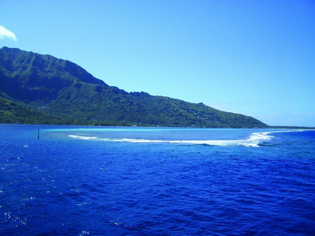 coral-reef.jpg
